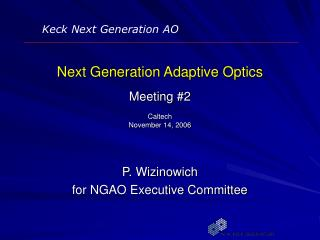Next Generation Adaptive Optics Meeting #2 Caltech November 14, 2006