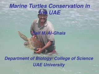 Marine Turtles Conservation in the UAE