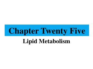 Chapter Twenty Five
