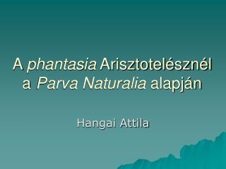 A  phantasia  Arisztotelésznél  a  Parva Naturalia  alapján