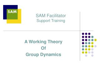 SAM Facilitator  Support Training