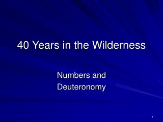40 Years in the Wilderness