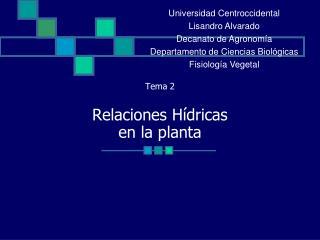 Tema 2 Relaciones Hídricas  en la planta