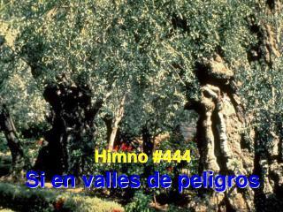 Himno #444 Si en valles de peligros