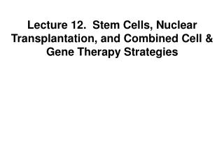 Lecture 12.  Stem Cells, Nuclear Transplantation, and Combined Cell & Gene Therapy Strategies