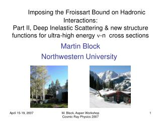 Imposing the Froissart Bound on Hadronic Interactions: