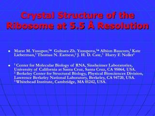 Crystal Structure of the Ribosome at 5.5  Å  Resolution