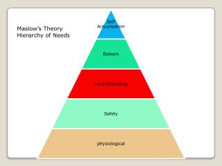 Maslow's Theory Hierarchy of Needs