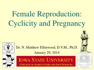 Female Reproduction: Cyclicity and Pregnancy