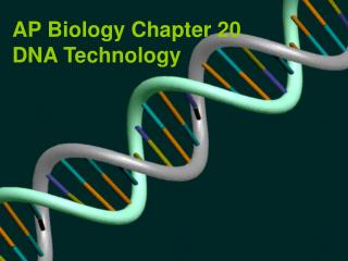 AP Biology Chapter 20 DNA Technology