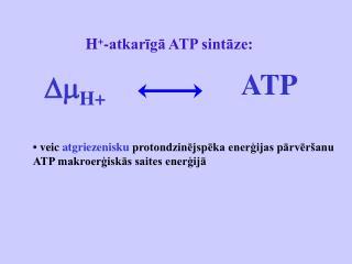 H + -atkarīgā ATP sintāze: