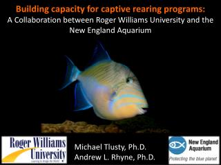 Building capacity for captive rearing programs: