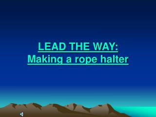 LEAD THE WAY: Making a rope halter