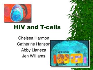 HIV and T-cells