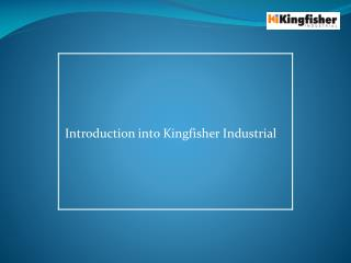 Introduction into Kingfisher Industrial