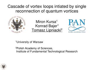 Cascade of vortex loops intiated by single reconnection of quantum vortices
