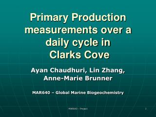 Primary Production measurements over a daily cycle in  Clarks Cove