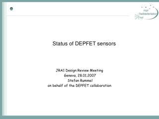 Status of DEPFET sensors
