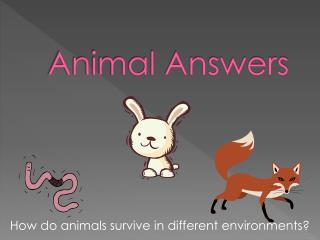 Animal Answers