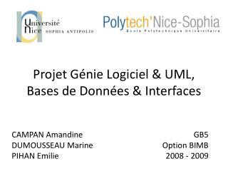 Projet Génie Logiciel & UML, Bases de Données & Interfaces
