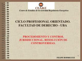 CICLO PROFESIONAL ORIENTADO. FACULTAD DE DERECHO - UBA
