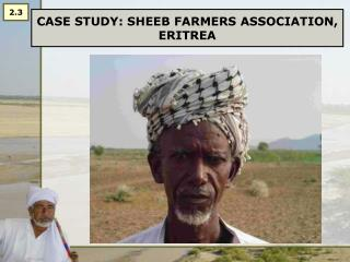 CASE STUDY: SHEEB FARMERS ASSOCIATION, ERITREA