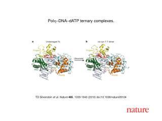 TD Silverstein  et al. Nature 465 , 1039-1043 (2010) doi:10.1038/nature09104