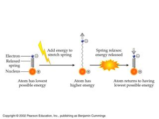 Energy Level Diagram