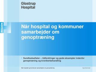 Når hospital og kommuner samarbejder om genoptræning