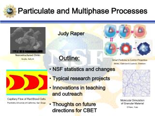 Particulate and Multiphase Processes