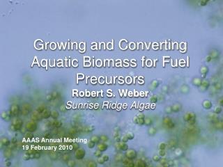 Growing and Converting Aquatic Biomass for Fuel Precursors Robert S. Weber Sunrise Ridge Algae