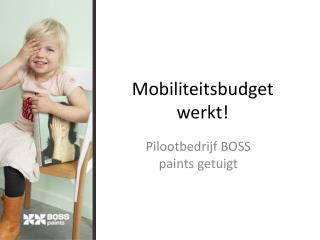 Mobiliteitsbudget werkt!