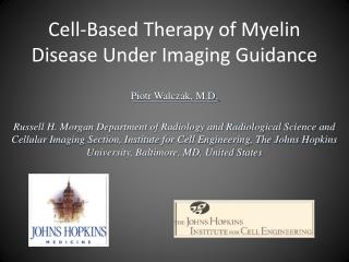 Cell-Based Therapy of Myelin Disease Under Imaging Guidance