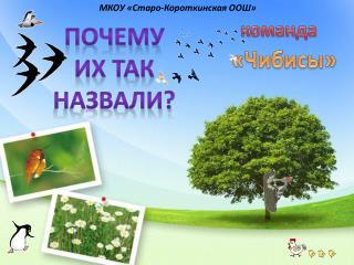 МКОУ « Старо-Короткинская  ООШ»