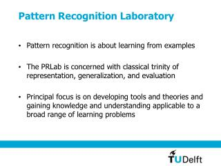 Pattern Recognition Laboratory