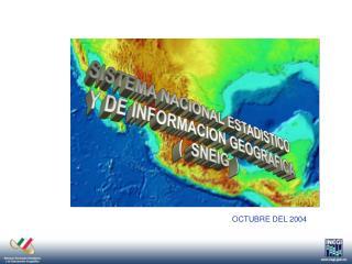 SISTEMA NACIONAL ESTADISTICO   Y DE INFORMACION GEOGRAFICA (  SNEIG  )