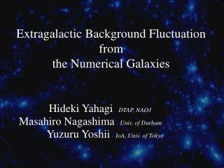 Extragalactic Background Fluctuation from the Numerical Galaxies