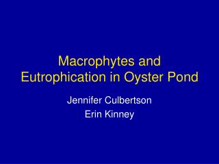 Macrophytes and Eutrophication in Oyster Pond