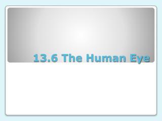 13.6 The Human Eye