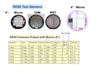 RD50 Test Sensors