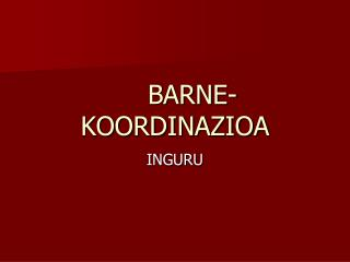 BARNE-KOORDINAZIOA
