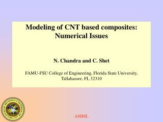 Modeling of CNT based composites: Numerical Issues N. Chandra and C. Shet