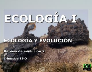 ECOLOGÍA I ECOLOGÍA Y EVOLUCIÓN Repaso de evolución 2 Trimestre 12-O