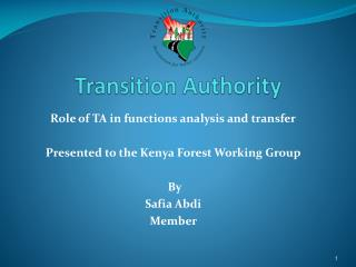 Transition Authority
