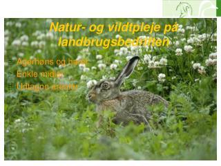 Natur- og vildtpleje på landbrugsbedriften