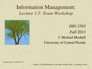 Information Management: Lecture 1.5: Team Workshop