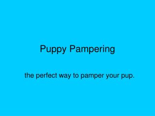 Puppy Pampering