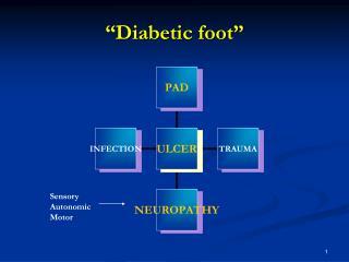 """""""Diabetic foot"""""""