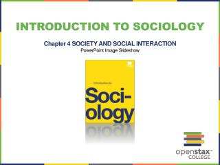 Introduction to Sociology Chapter 4  SOCIETY AND SOCIAL  INTERACTION PowerPoint Image Slideshow