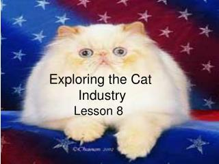 Exploring the Cat  Industry